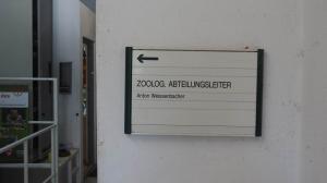 Schönbrunn 04